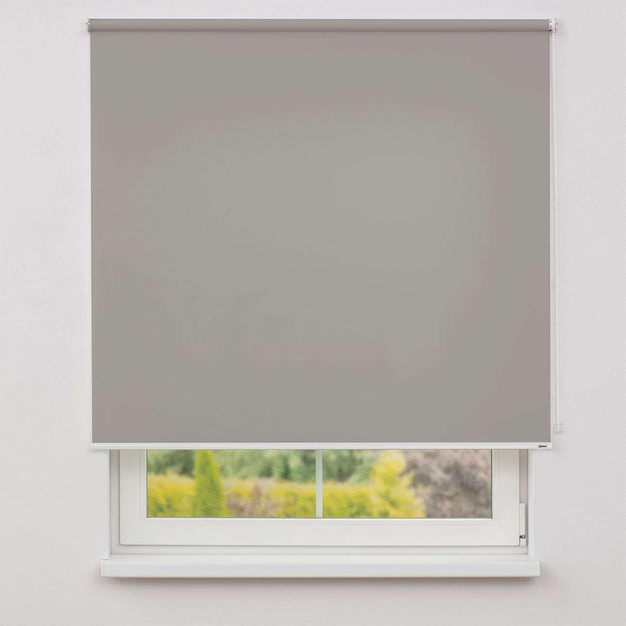 Rullegardiner transparent fra kollektionen Rullegardinstof, Stof: 4993