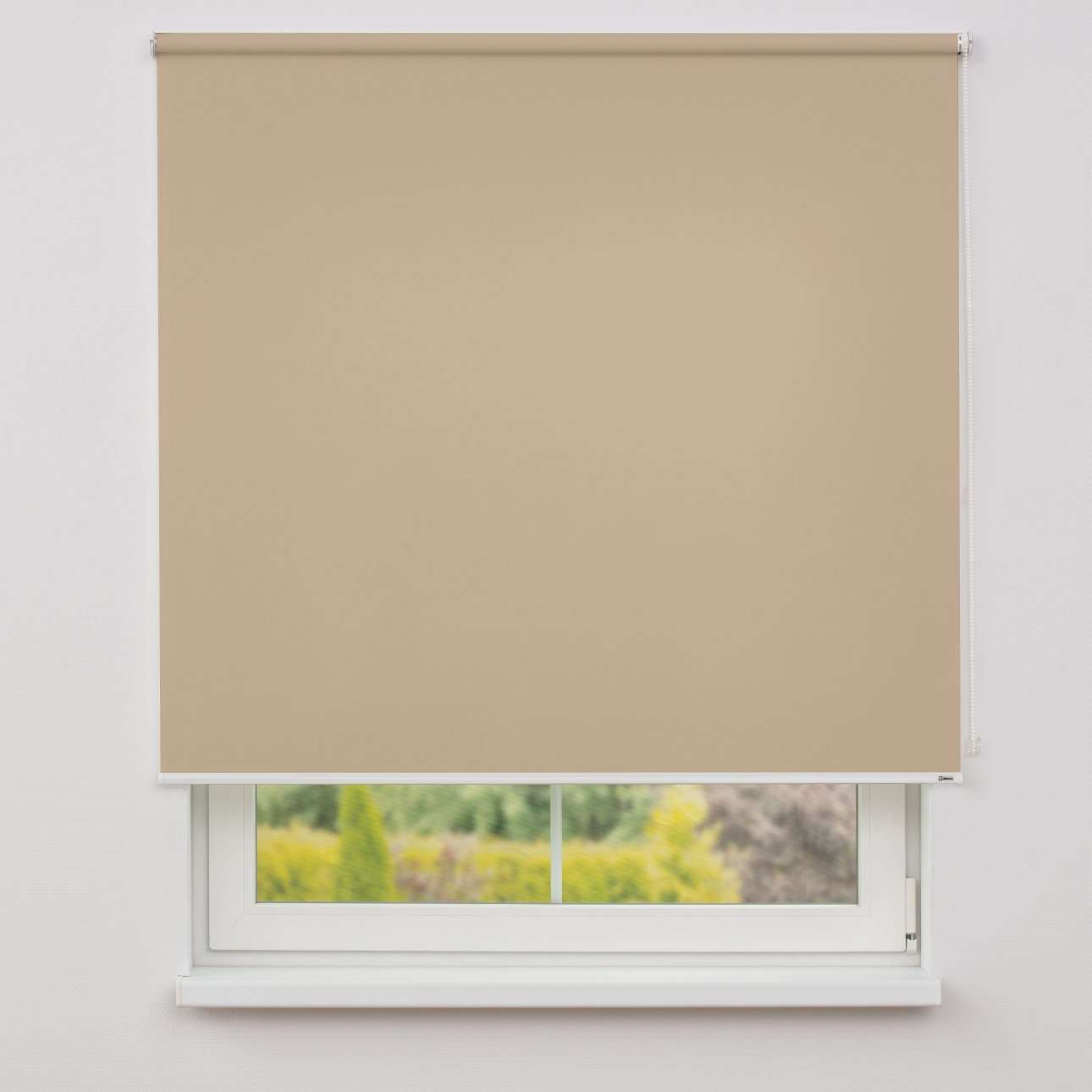 Roller blind  in collection Roller blind transparent, fabric: 4999
