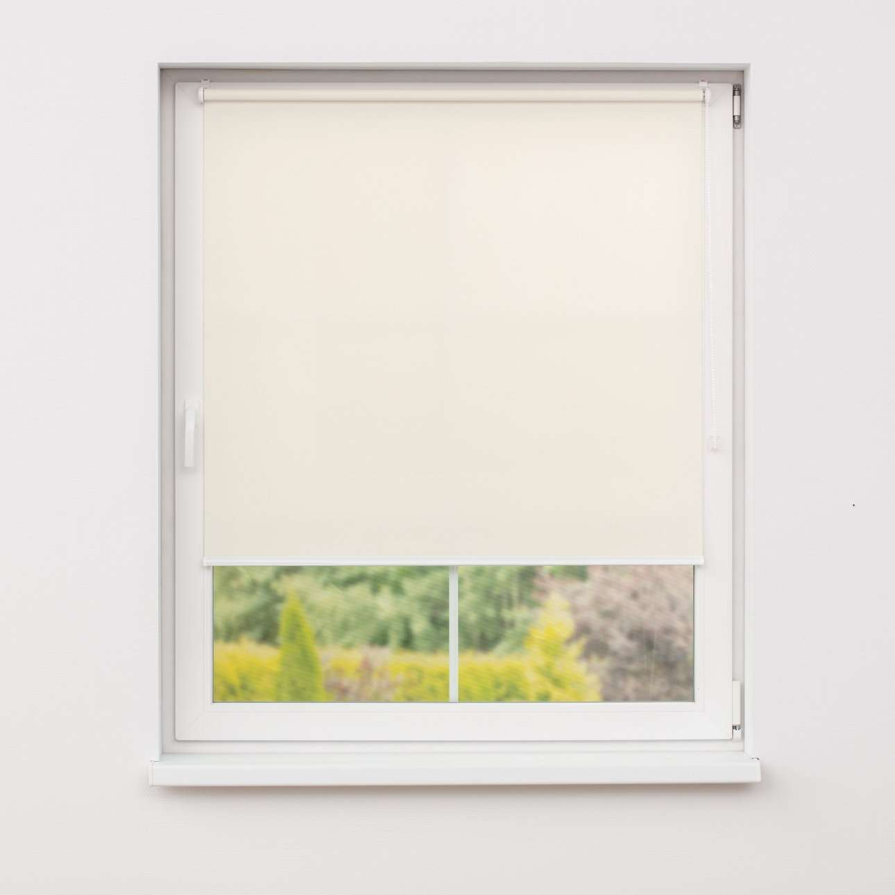 Mini roller blind (compact design for fitting inside window recess) in collection Roller blind transparent, fabric: 4905