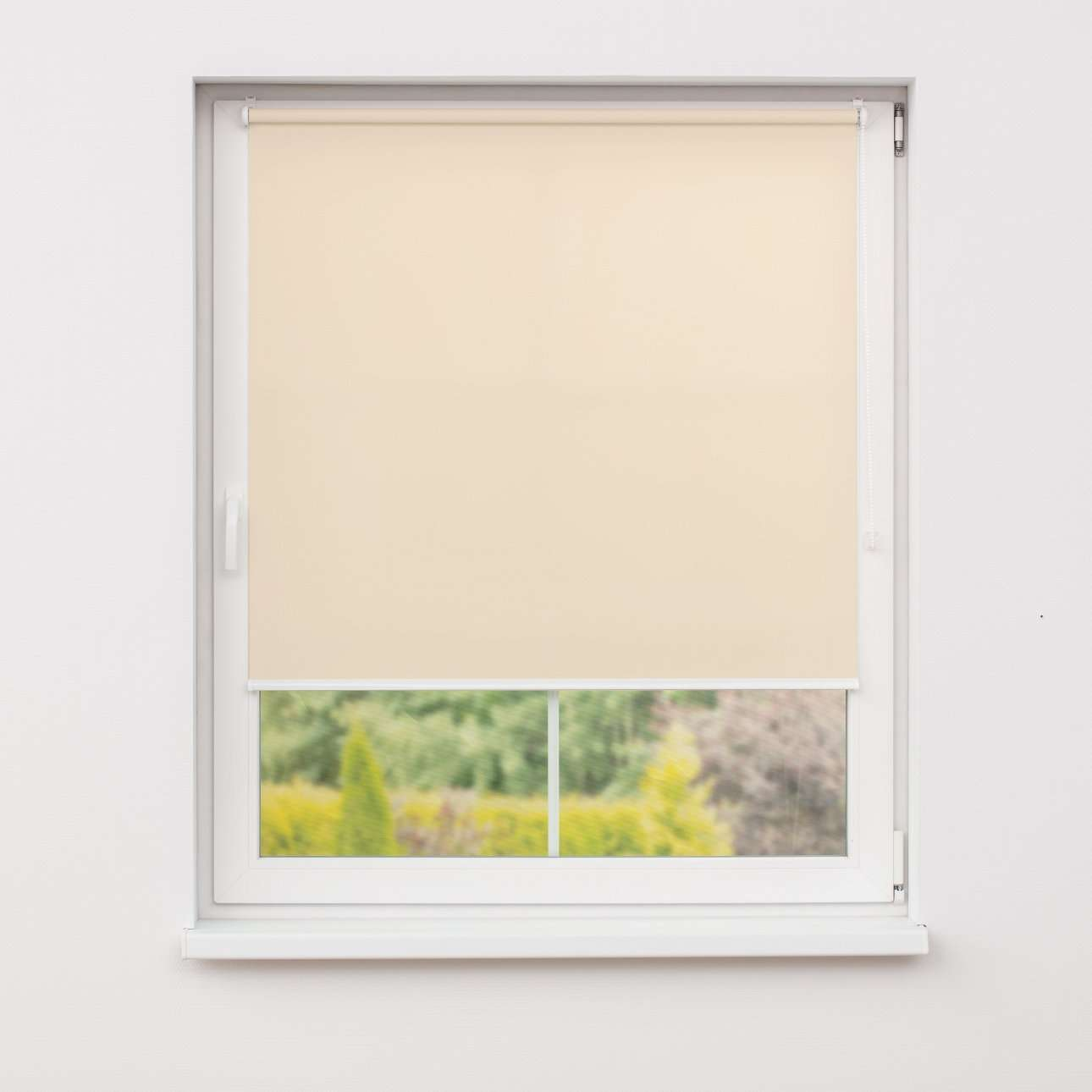 Window recess roller blind in collection Roller blind transparent, fabric: 4996